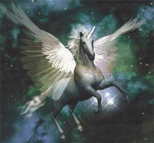 Real Unicorns And Pegasus Top Baby Unicorn Images For Pinterest
